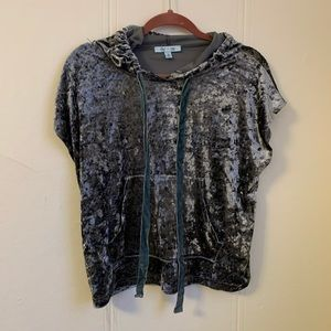 She +Sky Silver Velvet Cropped Hoodie Blouse Small